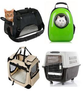 transportin para viajar con tus mascotas
